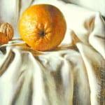 David Hardy – An Orange with an Attitude – 12″x 9″ – Oil